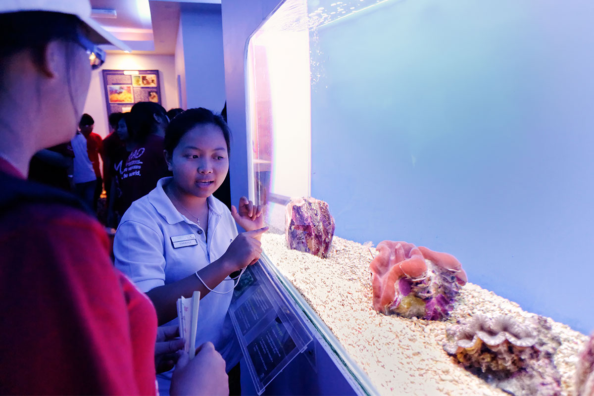 MERC display room aquarium